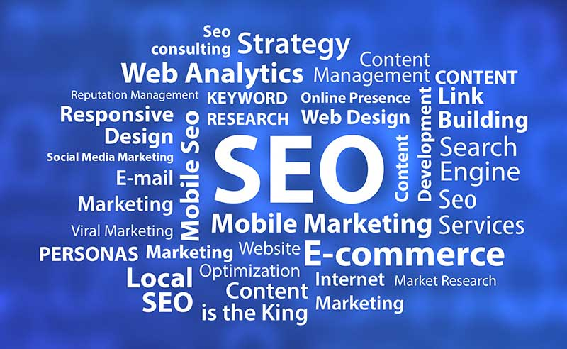 Seo & Marketing Coolcat Web Design