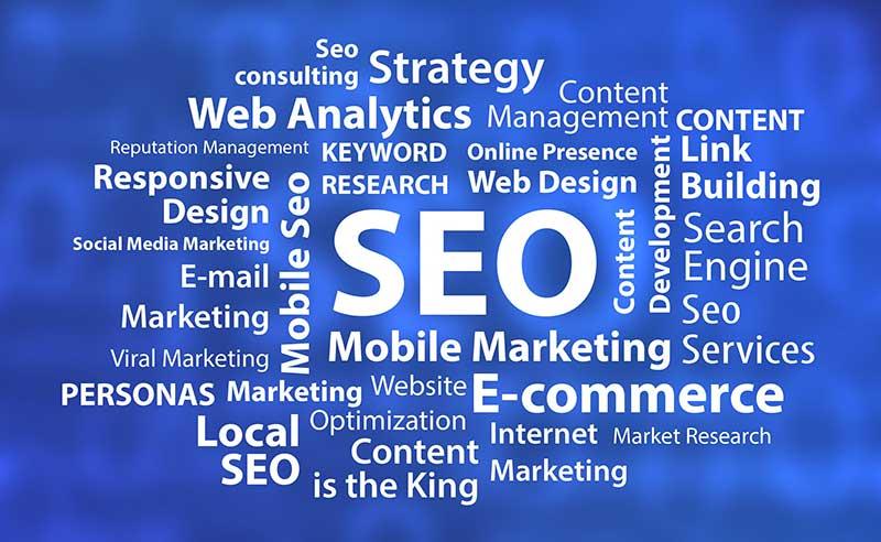 Seo & Marketing Coolcat Web Design