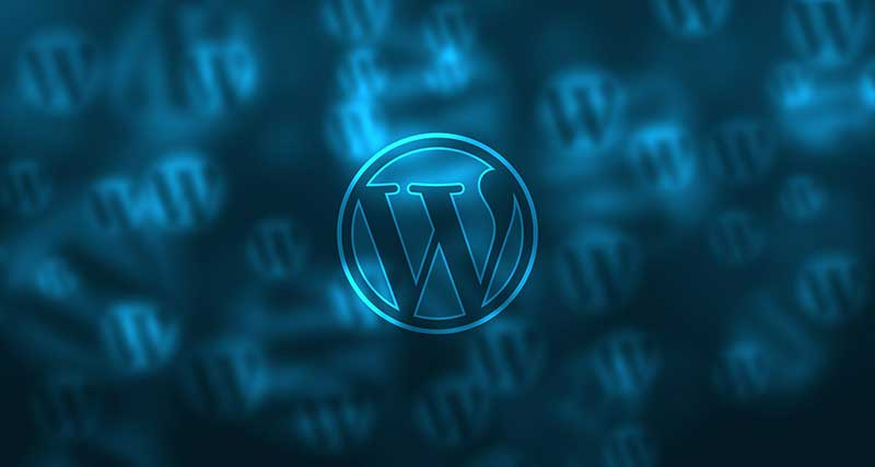 Wordpress Web Design Coolcat Web Design